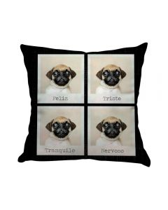 Almofada Teen Decorativa 45X45cm Estampada - Pug