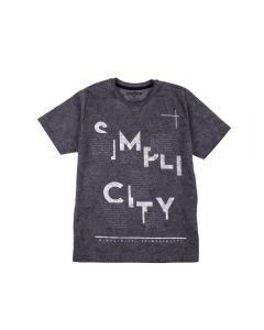 Camiseta de 12 a 16 Anos Lavação Rovitex Mescla Chumbo