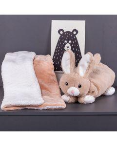 Cobertor Baby Sherpa Com Travesseiro - Coelho