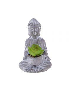 Suculenta Buddah Flower 10X9x16cm House 36 - Cinza