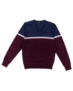Suéter Masculino Adulto Color Thing
