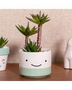 Vaso Decorativo com Planta Artificial 21cm Yaris - Colors