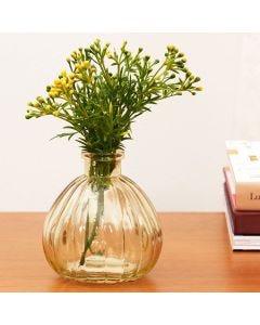 Vaso Decorativo Olivia - Ambar