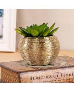 Vaso Decorativo Suculenta 10cm Concepts Life - Dourado