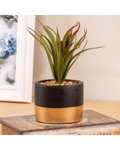 Vaso Suculenta Decorativa Concepts Life - Yucca