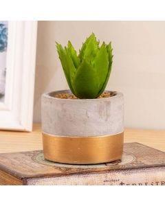 Vaso Suculenta Decorativa Concepts Life - Green