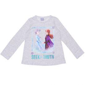Blusa 4 a 10 anos Frozen Irmãs Seek Truth Disney Mescla